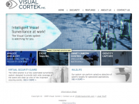 Visual Cortek